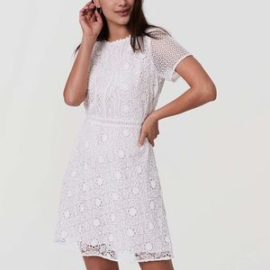 Ann Taylor LOFT Camellia Lace Dress Whisper White